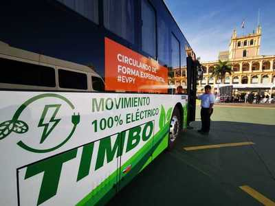 Magno Línea 12 hoy realizará viajes gratuitos por el día del medio ambiente