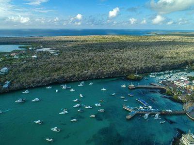 Galápagos celebra nacimiento de aves en peligro de extinción