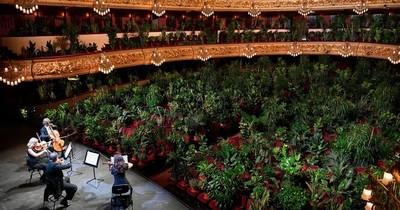 Ópera de Barcelona reabrió con un concierto para 2.292 plantas