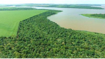 Aprueban nuevas normativas para defender áreas protegidas