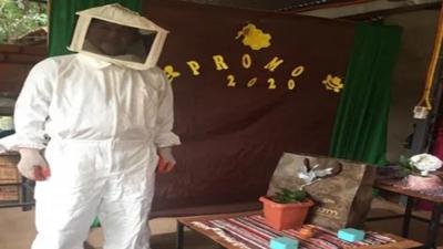 Abuelo estudió online y se recibió de apicultor