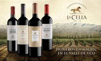 HOY / Llegan al país los reconocidos vinos Finca La Celia y Misiones D' Rengo
