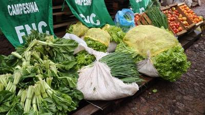 Campesinos donan 20.000 kilos de alimentos para ollas populares