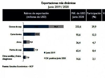 Exportación agropecuaria  repunta en junio y la caída  se desacelera