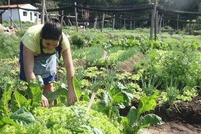 Senatur y MAG promueven uso de huertas ecológicas en posadas turísticas rurales