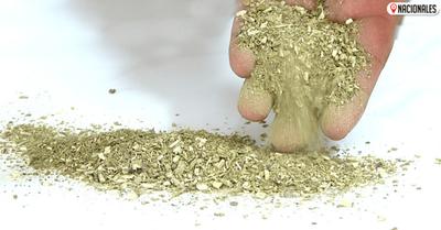Delinean estrategias para fortalecer presencia de la yerba mate en los mercados internacionales