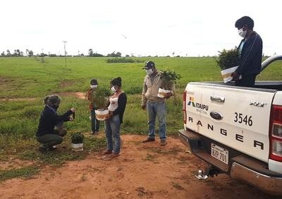 Entregan plantines a comunidades indígenas de Itakyry