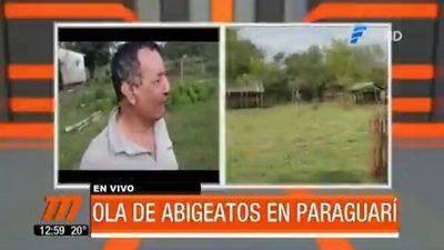 Abigeato campea en Paraguarí y desespera a ganaderos