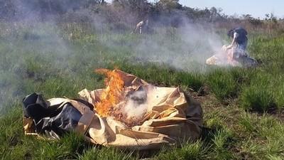 Senad destruye campamento narco en una estancia de Alto Paraná