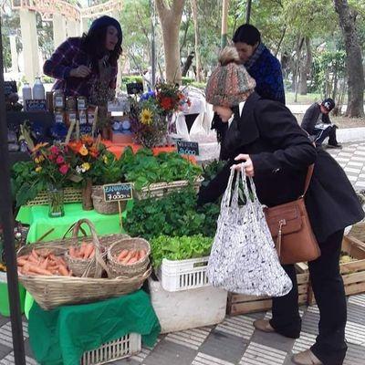 Vuelve la feria de La Red Agroecológica desde mañana en la plaza Italia