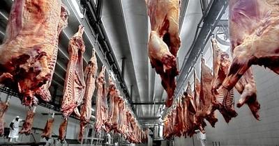 El volumen de exportación de carne volvió a repuntar después de dos años