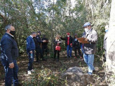 Convocan a indagatoria a sospechoso de tala ilegal en el Ybytyruzú