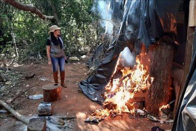 Azotey : Destruyen casi 4.000 kilogramos de droga