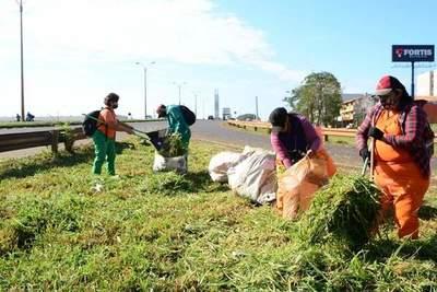Municipalidad de CDE hace limpieza de Ruta PY 02 ante abandono de Tape Porã
