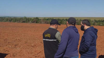Criminal desmonte de unas 160 hectáreas,  provocado por un brasileño en Canindeyú – Diario TNPRESS