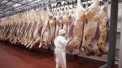 Exportación de carne, alimentos y fármacos aumentaron en primera quincena de julio