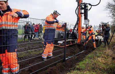 Alemania construirá 62 km de vallas en la frontera con Polonia por fiebre porcina