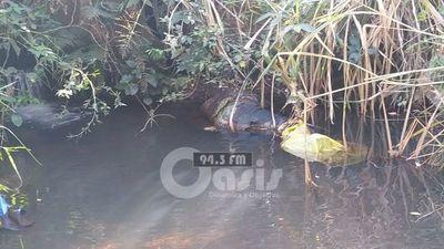 Cadáver encontrado en un arroyo en zona de  Zanja Pytã aún no fue identificado
