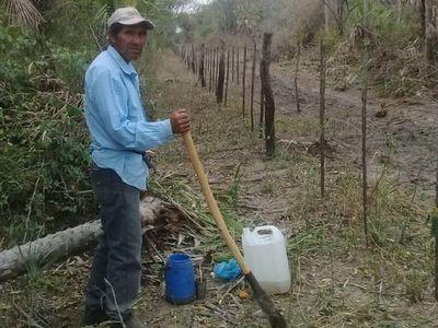 Indígenas beben agua de tajamar y claman por alimentos en el Chaco
