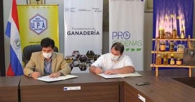 Promueven crecimiento del sector apícola vía Alianza Público-Privada