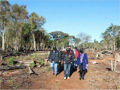 Suman 8 imputados por depredación de bosques en franja de Itaipú