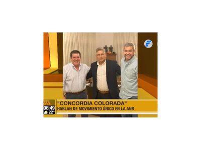 Mario Abdo se reunió con Horacio Cartes y los 13 gobernadores colorados