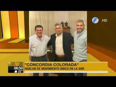 "Abdo y Cartes afianzan movimiento ""Concordia Colorada"""