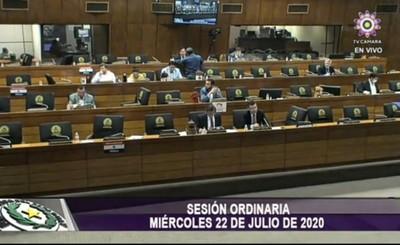 Diputados aprueban la suspensión de la feria judicial 2021