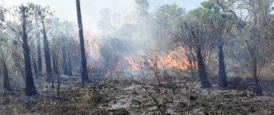 Focos de incendio generan preocupación en el Chaco