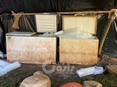Senad destruye laboratorio de procesamiento de marihuana congelada en Karapaí