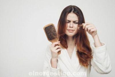 Si últimamente dejas cabellos por todas partes, es momento de que pienses en tu salud mental