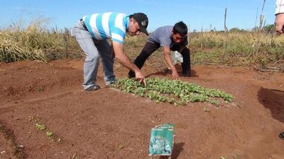 Ysyry guasu Paraguay ha Paraná oguejývente ohóvo