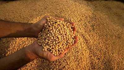 La demanda mundial de soja sigue marcando la tendencia alcista de precios