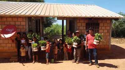 En comunidades nativas se desarrolla trabajo de reforestación