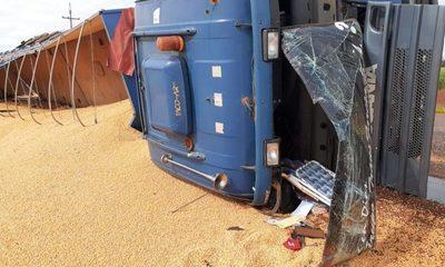 "Camión cargado con  granos de maíz vuelca  en curva ""Lapacho"" – Diario TNPRESS"