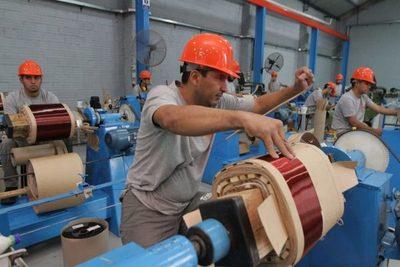 Industriales exigen que se rechace el veto del Ejecutivo