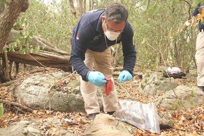 Caso de niña desaparecida: para realizarse prueba de ADN se necesita muestras del padre y hermana