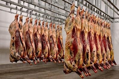 Chile frenó la demanda de carne pero se cerraron negocios a precios alcistas