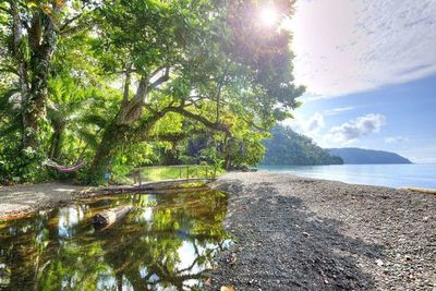 Con el sello 'Destino Seguro', Costa Rica reabre fronteras con UE, Reino Unido y Canadá desde agosto