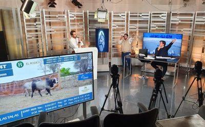 El Rodeo vendió el 100% de los toros de Las Talas con un máximo de Gs. 37,8 millones