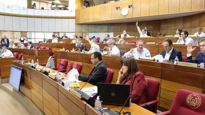 Senado rechaza veto a ley de anulación de facturas de servicios públicos