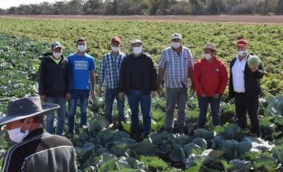 Destacan buena producción de hortalizas en plena sequía en Picada 500