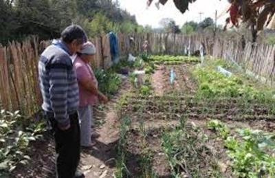 El Gobierno entregará aportes no reembolsables a familias vulnerables de Alto Paraná