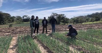 Destacan producción de huertas familiares en Paraguarí