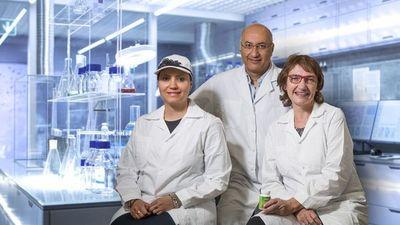 Directo al cerebro con nanotecnología