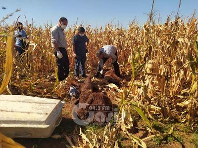 Hallan cadáver de un hombre que fue asesinado en zona de Zanja Pyta
