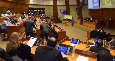 Voto censura al presidente de la ANDE se analizará hoy en Diputados