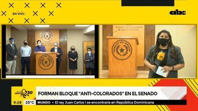 """Oposición forma bloque """"anticolorados"""" en el Senado"""