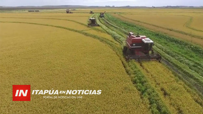 PARAGUAY EXPORTARÁ ARROZ VÍA FERROCARRIL DESDE ENCARNACIÓN A BUENOS AIRES