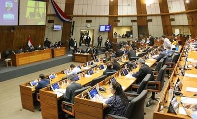 Voto censura para titular de la ANDE en Diputados